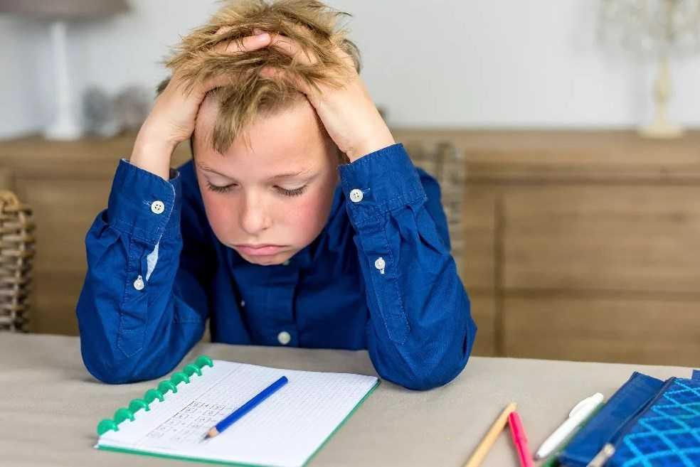 Может ли ребенок полюбить школу?